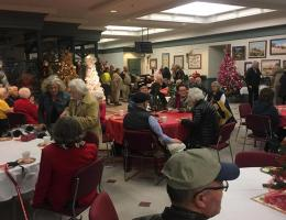 Festival of Lights: Seniors' Night